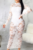 White Sexy Patchwork Mesh O Neck Lace Dress Dresses