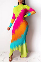 Multicolor Fashion Casual Print Asymmetrical Turtleneck Long Sleeve Dresses