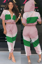 Pink Polyester Fashion Sexy Print Patchwork Mesh Straight Two-piece Pants Set