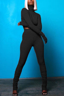 Black Casual Solid Fold Turtleneck Long Sleeve Two Pieces