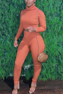 Orange Sexy Solid Split Joint Turtleneck Long Sleeve Two Pieces