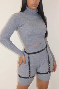 Grey Casual Solid Turtleneck Long Sleeve Two Pieces