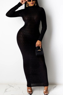 Black Fashion Sexy Solid Basic Turtleneck Long Sleeve Dress