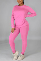 Light Purple Casual Solid Basic O Neck Long Sleeve Two Pieces