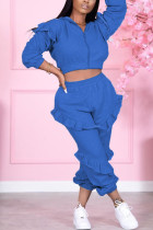 Blue Sexy Solid Split Joint Zipper Collar Long Sleeve Two Pieces