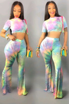 Multi-color Polyester Sexy Fashion crop top Tie Dye Slim fit Skinny Short Sleeve Two-piece Pants Set