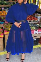 Hide Blue Casual Patchwork Solid Mesh Without Belt Mandarin Collar Irregular Dress Plus Size Dresses