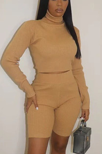 Yellow Casual Solid Turtleneck Long Sleeve Two Pieces
