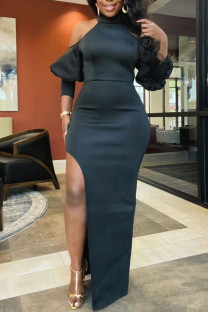 Black Sexy Solid Split Joint High Opening Half A Turtleneck Straight Dresses
