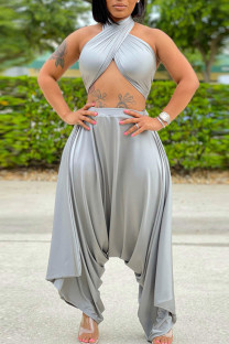 Silver Gray Casual Solid Bandage Split Joint Backless Strapless Sleeveless Two Pieces