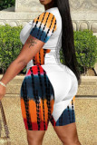 Multicolor Fashion Casual Print Split Joint O Neck Plus Size Two Pieces