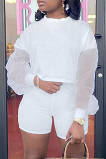 White Casual Mesh O Neck Long Sleeve Two Pieces