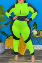 Green Casual Solid Split Joint Zipper Collar Plus Size Jumpsuits