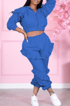 Blue Fashion Casual Solid Split Joint Hooded Collar Long Sleeve Two Pieces
