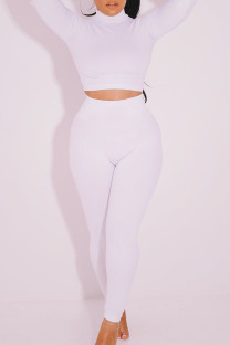 White Casual Solid Split Joint Turtleneck Long Sleeve Two Pieces