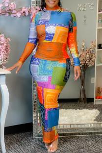 Multicolor Fashion Casual Print Basic Turtleneck Long Sleeve Dresses