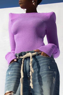 Purple Sexy Solid Split Joint O Neck Tops