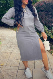 Light Gray Fashion Casual Solid Slit Hooded Collar Long Sleeve Dresses