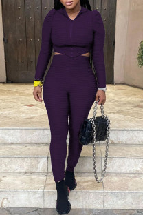 Purple Casual Solid Split Joint Asymmetrical Zipper Hooded Collar Long Sleeve Two Pieces