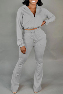 Grey Fashion Casual Solid Basic Zipper Collar Long Sleeve Two Pieces