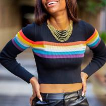 Casual Long Sleeves Black Sweaters