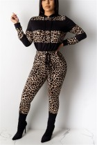 Fashion Casual Leopard Stitching Brown Hooded Two-Piece Suit