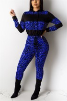 Fashion Casual Leopard Stitching Blue Hooded Two-Piece Suit