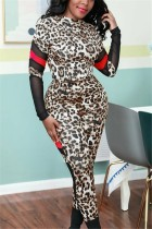 Fashion Casual Stitching Leopard Gray Two-Piece Suit