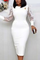 Fashion Mesh Long Sleeve White Dress