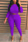 Purple Fashion Sexy O Neck Long Sleeve Regular Sleeve Solid Plus Size Set