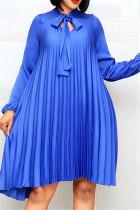 Blue Casual Regular Sleeve Long Sleeve Mandarin Collar Pleated Knee Length Solid Dresses