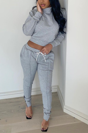 Gray Fashion Casual Long Sleeve Turtleneck Regular Sleeve Regular Solid Two Pieces