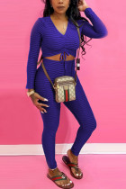 Purple Fashion Casual Long Sleeve V Neck Regular Sleeve Short Solid Two Pieces