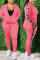 Pink Fashion Casual Long Sleeve Zipper Collar Regular Sleeve Regular Patchwork Two Pieces