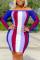 Blue Sexy Striped Print Split Joint Bateau Neck Long Sleeve Mini Pencil Skirt Dresses