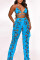 BlueButterfly Sexy Mesh Printing Swimsuit Two-piece Set