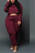 Red Wine Fashion Hot Style Women's Sexy Lace Suites
