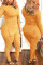 Yellow Fashion Casual Solid Basic V Neck Long Sleeve Two Pieces
