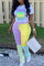 Yellow Casual Print Split Joint O Neck Plus Size Two Pieces Set