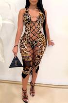 Leopard Print Fashion Sexy Leopard Hollowed Out Swimwears