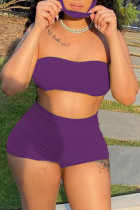 Purple Simplicity Solid Strapless Sleeveless Two Pieces(with a mask)