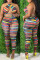 Colour Fashion Sexy Striped Print Bandage Backless Halter Plus Size Two Pieces