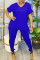 Blue Casual Solid Split Joint V Neck Plus Size Two Pieces