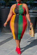 Multicolor Sexy Plus Size Striped See-through Without Belt Half A Turtleneck Sleeveless Dress