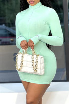 Light Green Fashion Sexy Solid Embroidered Zipper Collar Long Sleeve Dresses