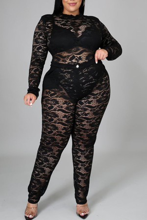 Black Sexy Solid Split Joint See-through O Neck Plus Size Two Pieces