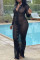 Black Fashion Sexy Solid See-through V Neck Long Sleeve Dresses