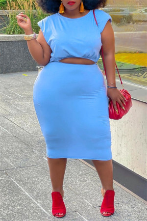 Light Blue Fashion Casual Solid Basic O Neck Plus Size Two Pieces