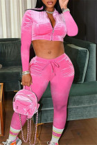 Pink Fashion Casual Solid Basic Zipper Collar Long Sleeve Two Pieces