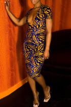 Blue Yellow Fashion Casual Print Basic V Neck Short Sleeve Dress